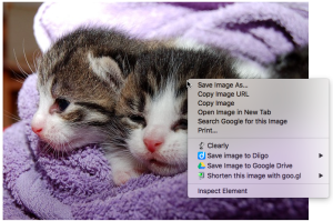 The pop-up menu lets you save images to Google Drive easily. (Image from Pixabay)